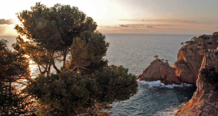 La cala d'Aiguablava, a Begur, a la Costa Brava. Foto: Dani (Flickr).