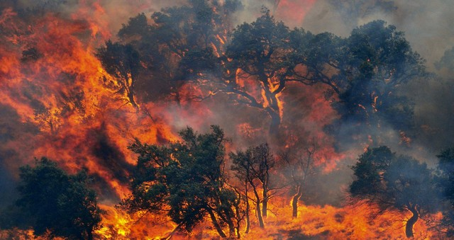 incendi empordà