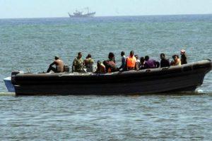 Pastera a la deriva al mar Mediterrani.