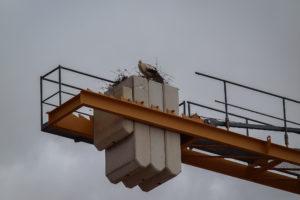 Una cigonya fa niu a una grua abandonada per la crisi econòmica i la bombolla immobiliària. Foto: J. Ruano.