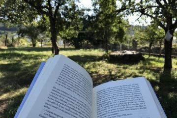 lectura vacances llibre