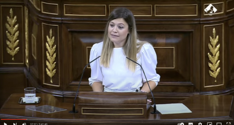 Captura de pantalla d'una intervenció de la diputada del PSOE Laura Berja al Congrés dels Diputats.